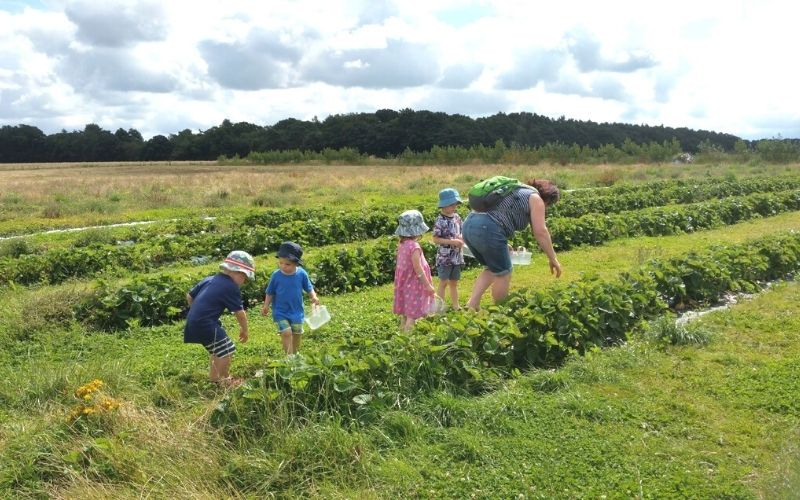 visiting pick your own farms near London with kids