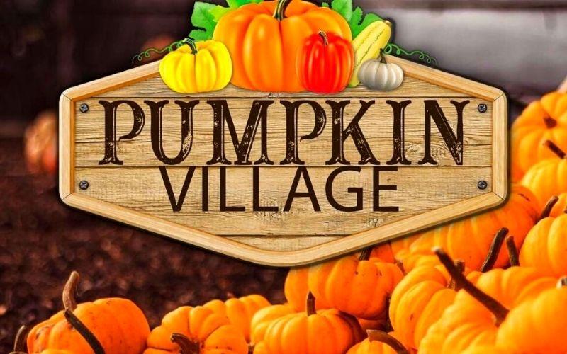 Pumpkin Village at Marsh Farm in Essex.