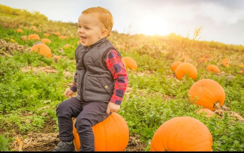 Child sitting on a pumpkin at one of the Halloween events in Hertfordshire.