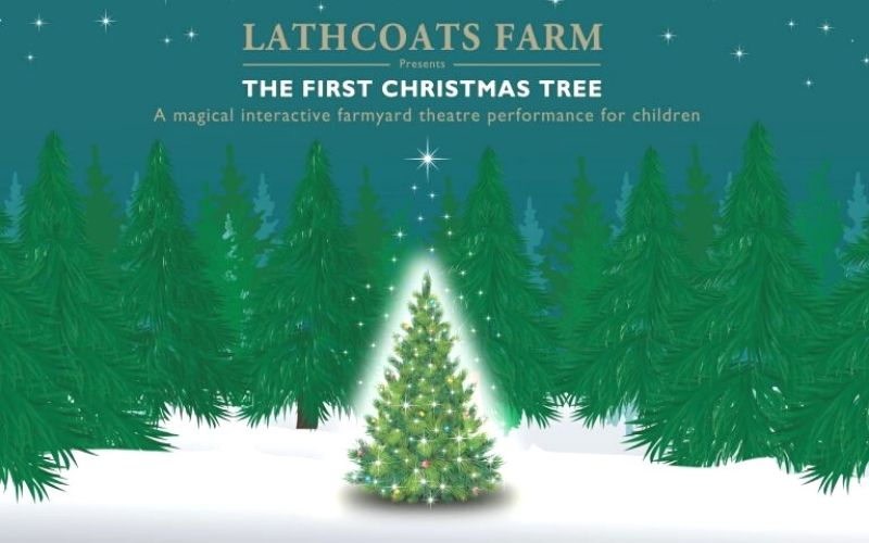 Lathcoats Farm Christmas performance