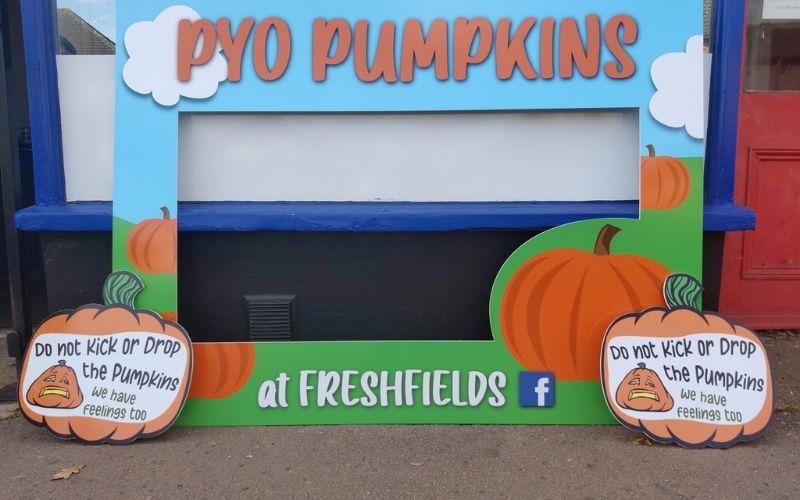 PYO Pumpkins at Freshfields pumpkin picking in Cambridgeshire