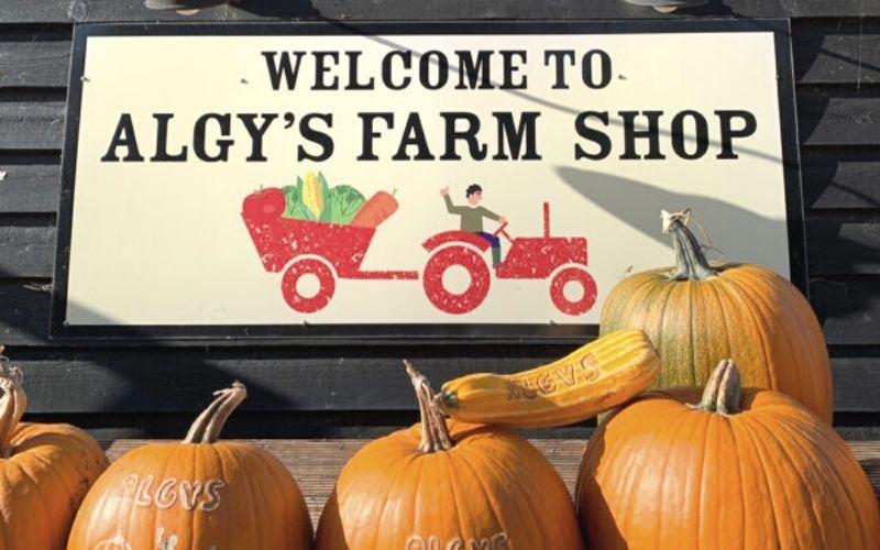 Pumpkins at Algys Farm Shop in Norfolk