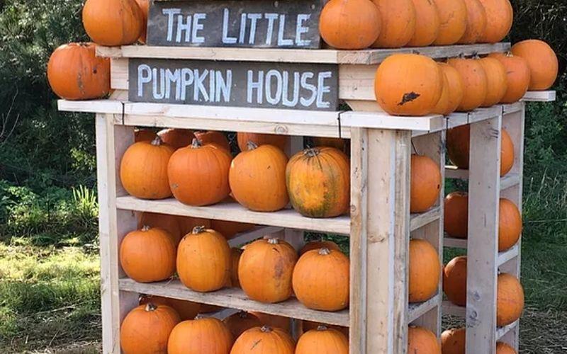 The Pumpkin House at Thursford.