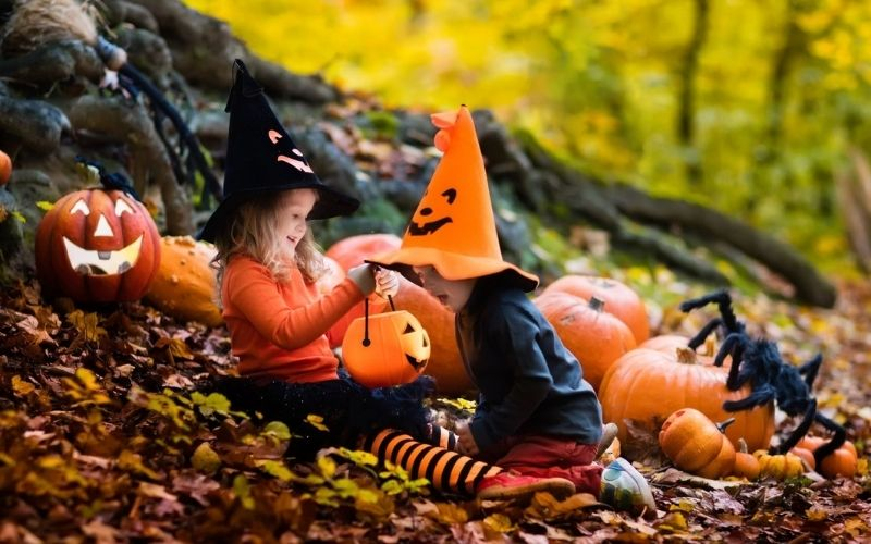 Two children dressed in Halloween costumes in a wood with pumpkins.