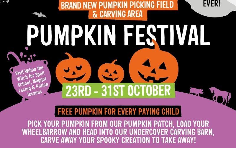 Wroxham Barns Pumpkin Festival.