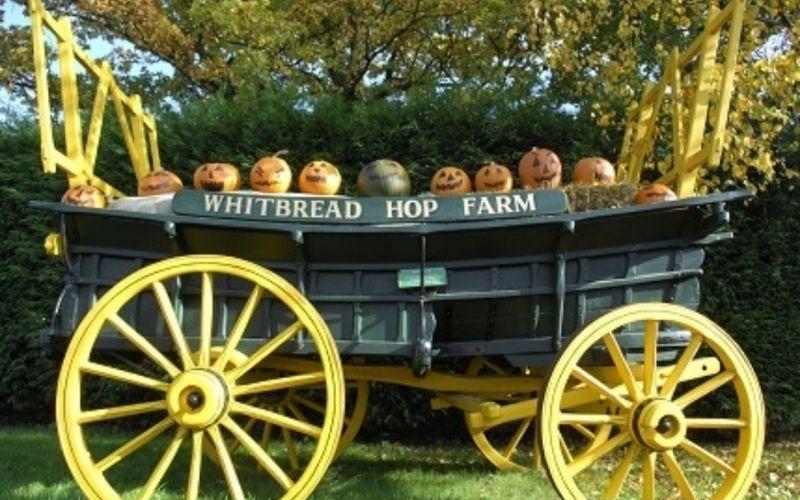 Pumpkins in a cart at Hop Farm Halloween events in Kent.