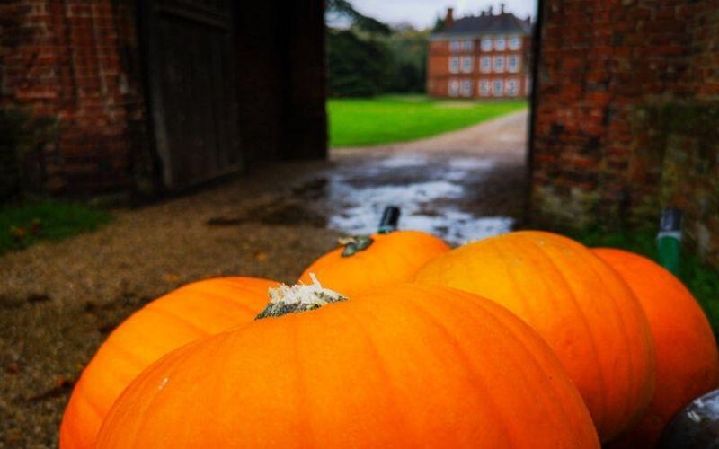Pumpkins outside Lullingstone Castle.